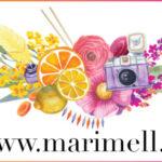 marimelli blogi võib pidada üheks Eesti suunamudimismaailma teerajajaks