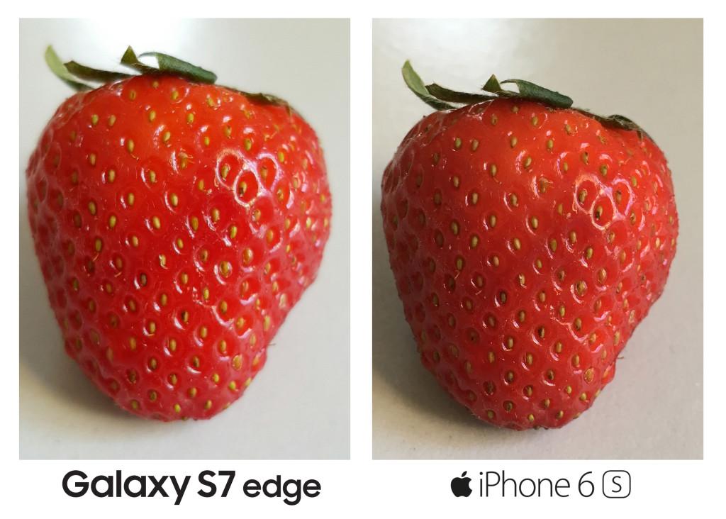 maasikas KOOS